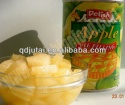 canned apple in syrup dices - product's photo