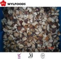 china good price frozen boletus edulisfrozen mushroom - product's photo