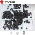 frozen summer truffle mushroom with good quality - product's photo