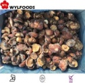 iqf price for frozen wild mushrooms - suillus granulatus - product's photo