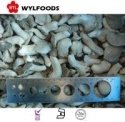 machines for frozen baby oyster mushroom china brands - product's photo