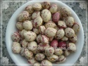 light speckled kidney beans xinjiang round shape - product's photo