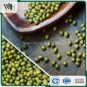 australia origin green mung bean - product's photo