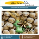 dried sacha inchi seeds - product's photo