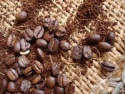 gourmet coffee - product's photo