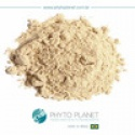 instant graviola pulp powder - product's photo