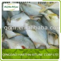frozen golden pompano - product's photo