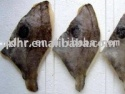 frozen john dory fillet - product's photo