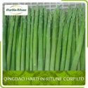 frozen asparagus - product's photo