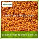 buckthorn fresh frozen - product's photo