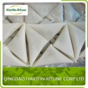 frozen samosa - product's photo
