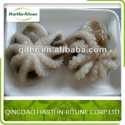frozen baby octopus - product's photo