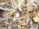 dry oyster mushroom - product's photo