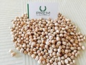 chickpeas (kabuli chickpeas) - product's photo