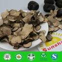 dried truffle mushroom (in fungus) - product's photo