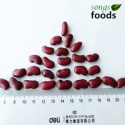 new dry fava beansand kidney beans - product's photo