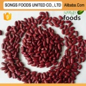 japanese red kidney beans with highes protein - product's photo
