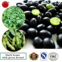 black bean with green kernel - product's photo