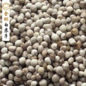 china supplier plant perilla seed - product's photo