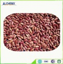 long shape light speckled kidney beans from china - product's photo