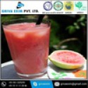 euro mango fruit juice - product's photo
