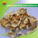 organic dried white oyster mushroom - product's photo