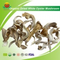 high quality organic dried white oyster mushroom - product's photo