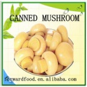 mushroom choice whole - product's photo