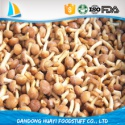 frozen nameko mushroom - product's photo