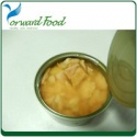canned fish tuna - product's photo