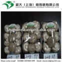 small packing shiitake mushroom - product's photo