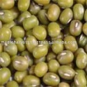 high quality organic green mung beans - product's photo