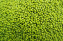 green mung beans - product's photo