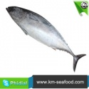 whole raw frozen bonito - product's photo