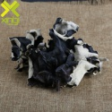 black fungus - product's photo
