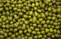 favorable price of green mung beans - product's photo
