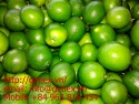 fresh seedless lime - product's photo
