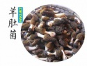 fresh morel mushrooms - product's photo