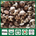 gourmet mushrooms - product's photo