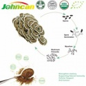 coriolus versicolor extract(polysaccharides) - product's photo