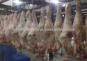 meat frozen halal buffalo compensated - product's photo