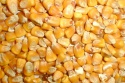 yellow corn (russia origin) - product's photo