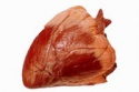 indian buffalo heart offal's - product's photo
