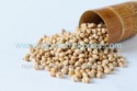 export quality indian garbanzo beans - product's photo
