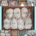 halal frozen chicken best quality - product's photo