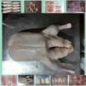 halal frozen duck good quality - product's photo