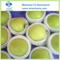chinese fresh green apple prices - product's photo