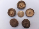 dried smooth mushroom - product's photo