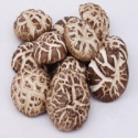 bulk whole cap cultivated smooth dried shiitake mushroom - product's photo