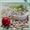 light specked kidney beans - product's photo